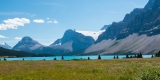 160816-Bow Lake
