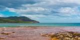 Burny Island